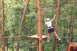 Kielce Atrakcja park linowy Kielecki Park Linowy